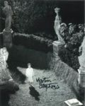 Martin Stephens (Village of the Damned) - Genuine Signed Autograph 7066